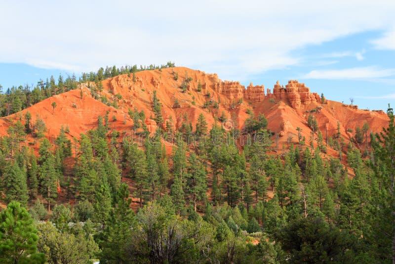 红色峡谷全景,犹他,美国 免版税库存照片