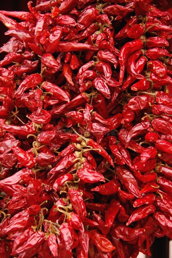 红色干的胡椒 免版税库存图片