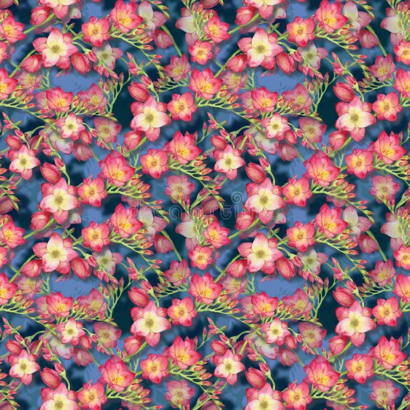 红色开花小苍兰,在蓝色背景的美好的花束分支,无缝的热带样式水彩例证 免版税库存照片