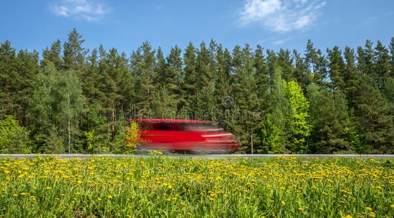 红色微型货车沿沿森林的路冲,路旁用黄色蒲公英盖 免版税库存照片