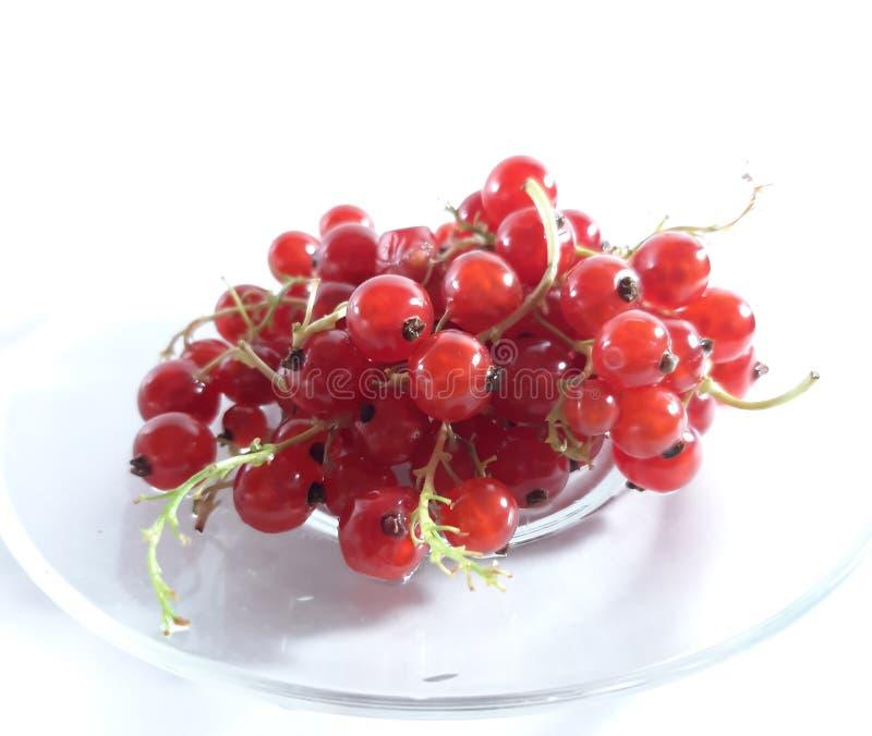 红色成熟无核小葡萄干 有用的莓果照片  r 与维生素的可口和健康点心 库存照片