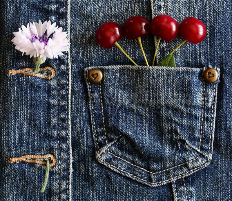 红色成熟樱桃 库存照片