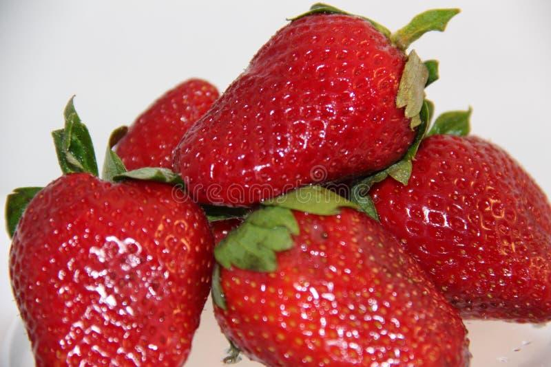 红色成熟草莓 库存图片