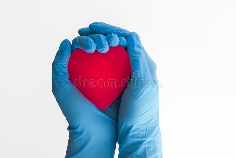 心脏在手中 库存照片