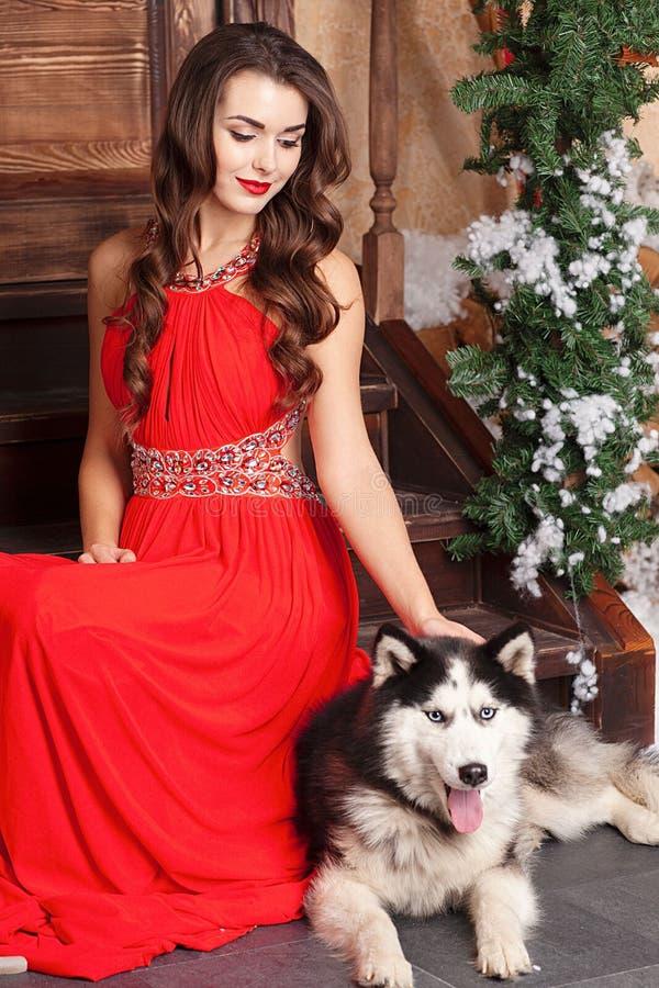 红色晚礼服的美女坐与她的狗的步,爱斯基摩 在圣诞节装饰的屋子的背景 免版税库存图片
