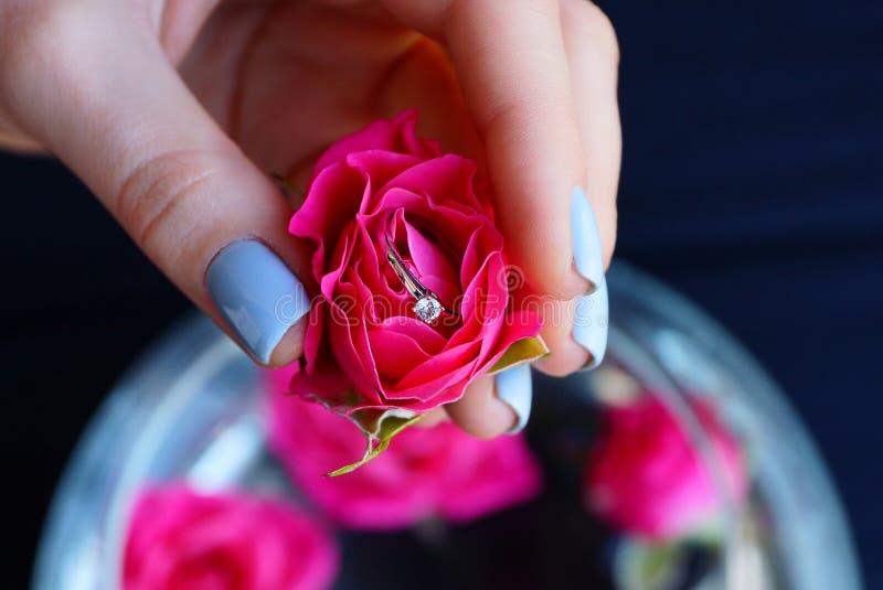 红色有金戒指的玫瑰芽在女孩手上 免版税库存照片