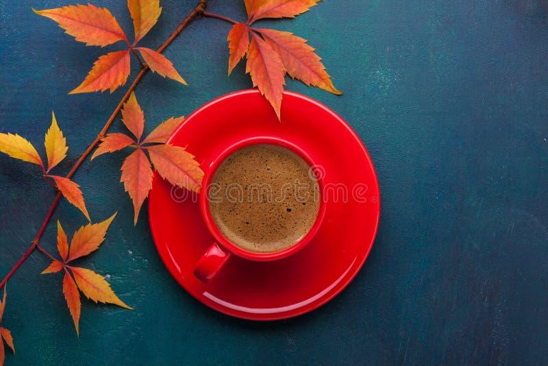 红色杯子五颜六色的秋叶弗吉尼亚爬行物-蓝色无奶咖啡和分支在黑暗的-绿色木桌 平的位置 免版税库存图片