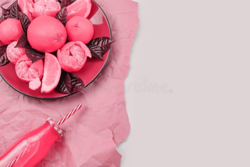 红色板材用桔子和蜜桔瓶用汁液定了调子居住的珊瑚顶视图拷贝空间 库存图片