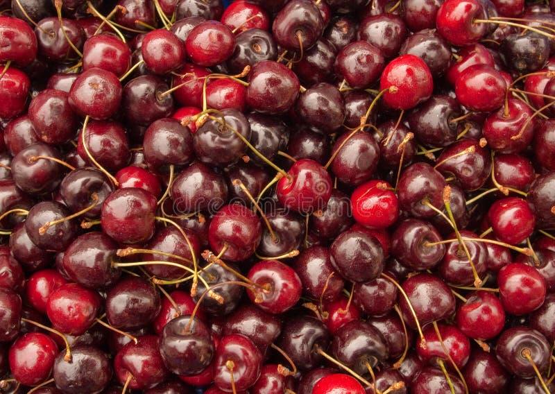 红色樱桃的批次 库存照片