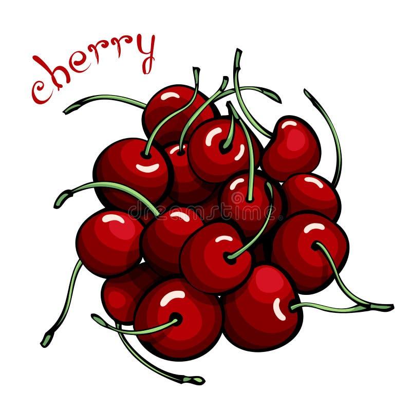 红色樱桃 库存例证