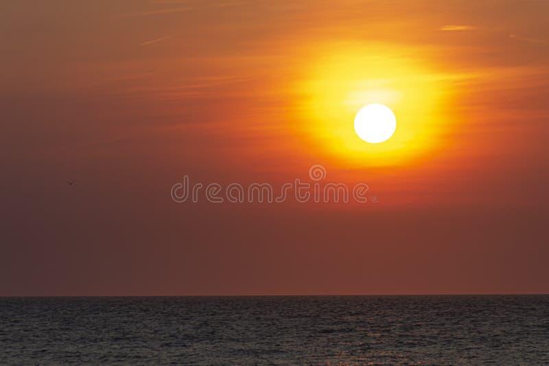 红色橙色生动的日落背景 免版税库存图片