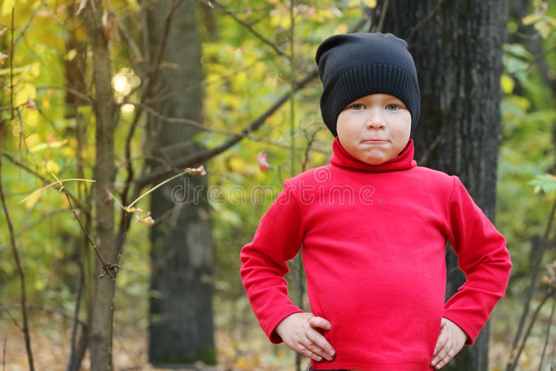 红色毛线衣和黑色的小男孩 库存图片