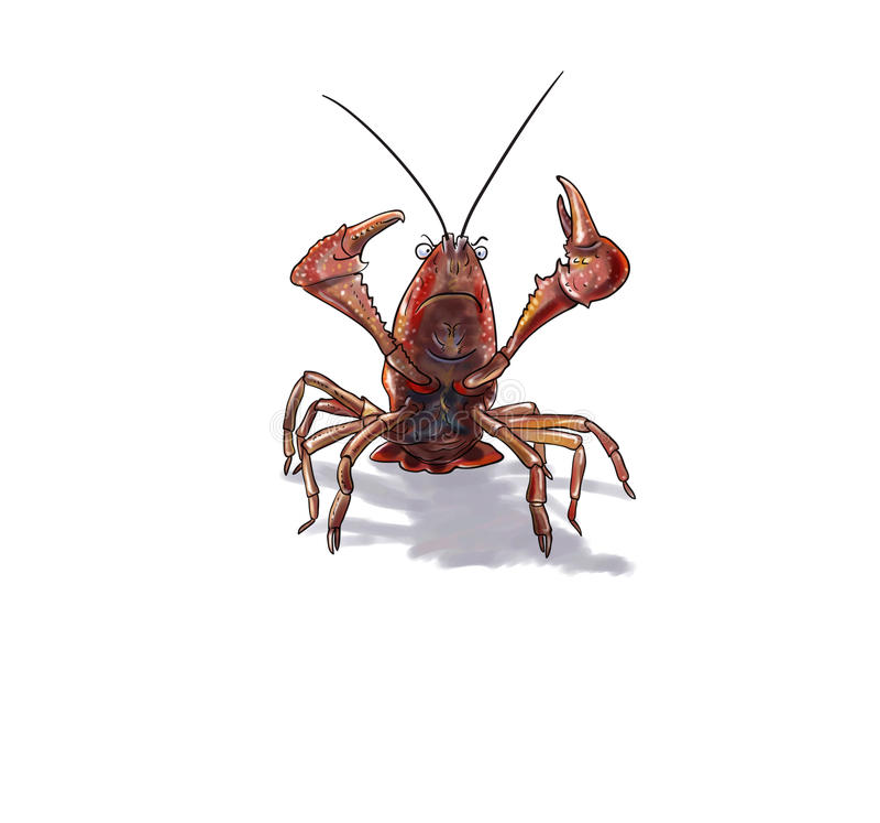 红色沼泽小龙虾 皇族释放例证