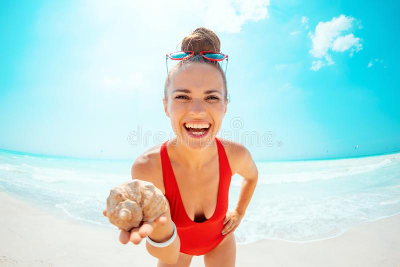 红色游泳衣的愉快的现代妇女在海滩陈列海壳 免版税图库摄影