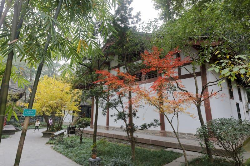 红色漆树在杜甫盖了村庄公园,多孔黏土rgb 库存图片