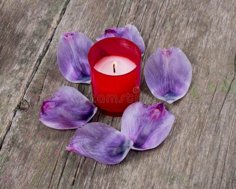红色灼烧的蜡烛围拢与淡紫色瓣 图库摄影
