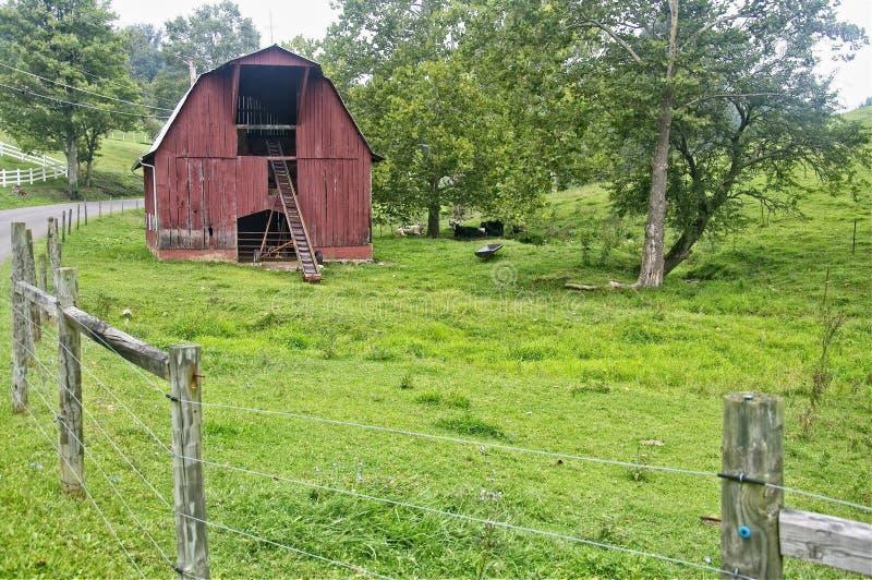 红色牛谷仓在西部弗吉尼亚草甸 库存照片