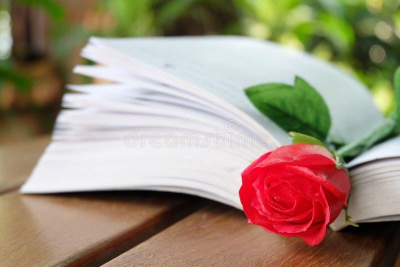 红色玫瑰和书 库存图片