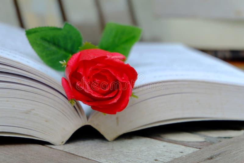 红色玫瑰和书 库存照片