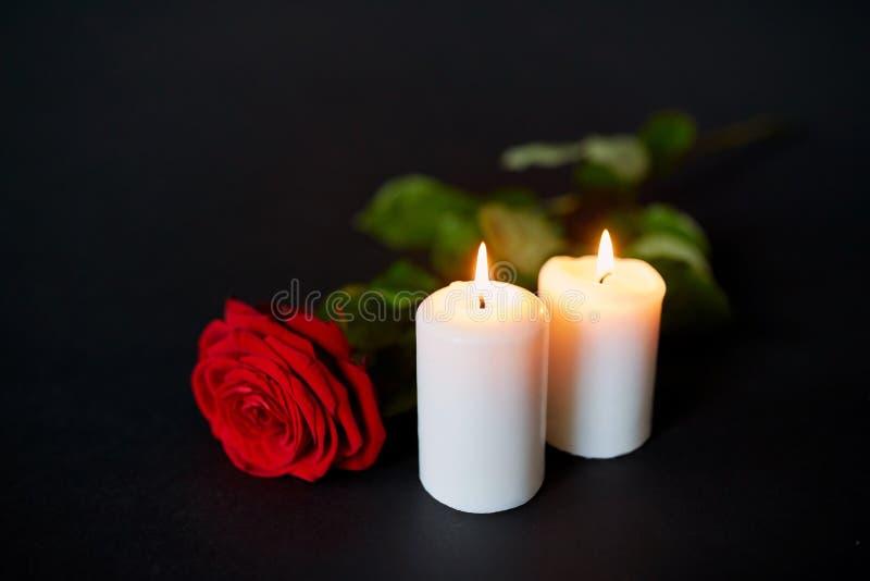 红色玫瑰和灼烧的蜡烛在黑背景 库存照片