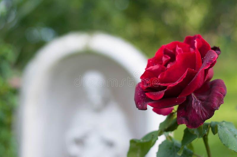 红色玫瑰和耶稣神圣的心脏雕象 库存图片