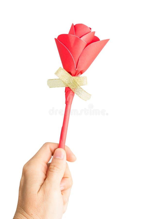 红色玫瑰在白色背景隔绝的女性手上 免版税库存照片
