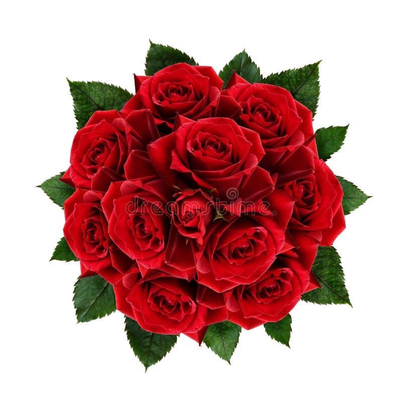 红色玫瑰开花花束 库存图片