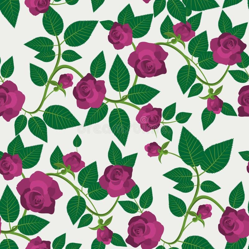 绯红色玫瑰无缝的样式 向量例证