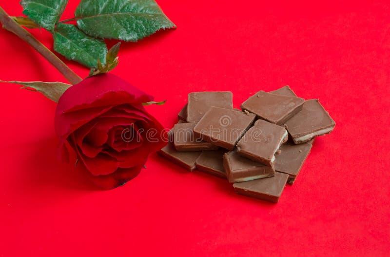 红色玫瑰用在红色背景的巧克力 库存图片