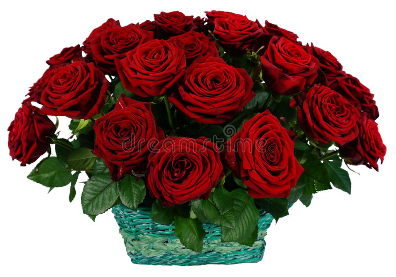51红色玫瑰篮子  免版税库存图片