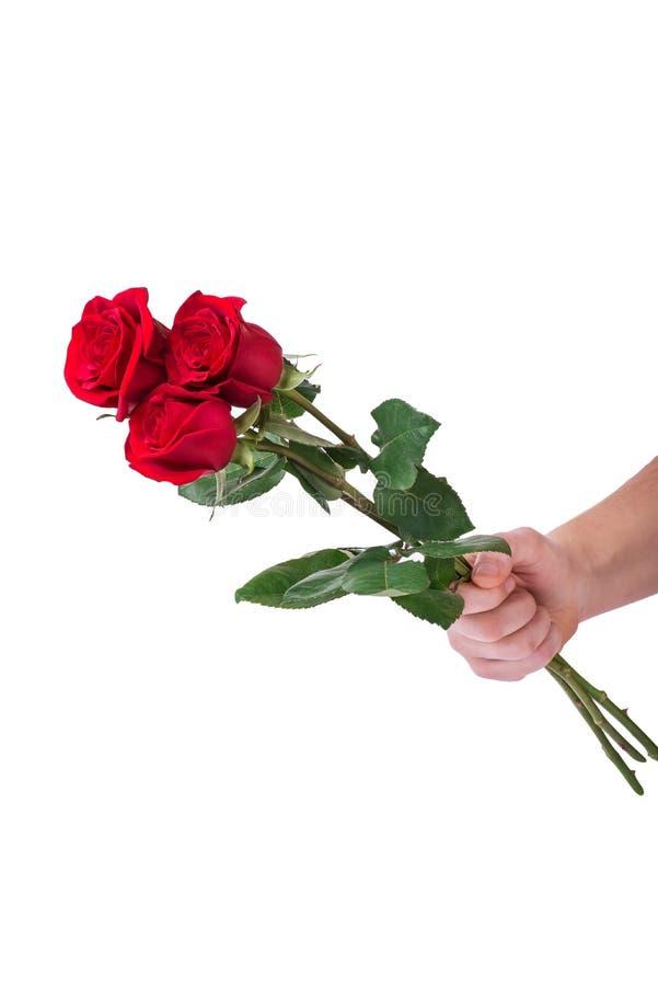 红色玫瑰花束花手中人隔绝与裁减路线 免版税库存图片