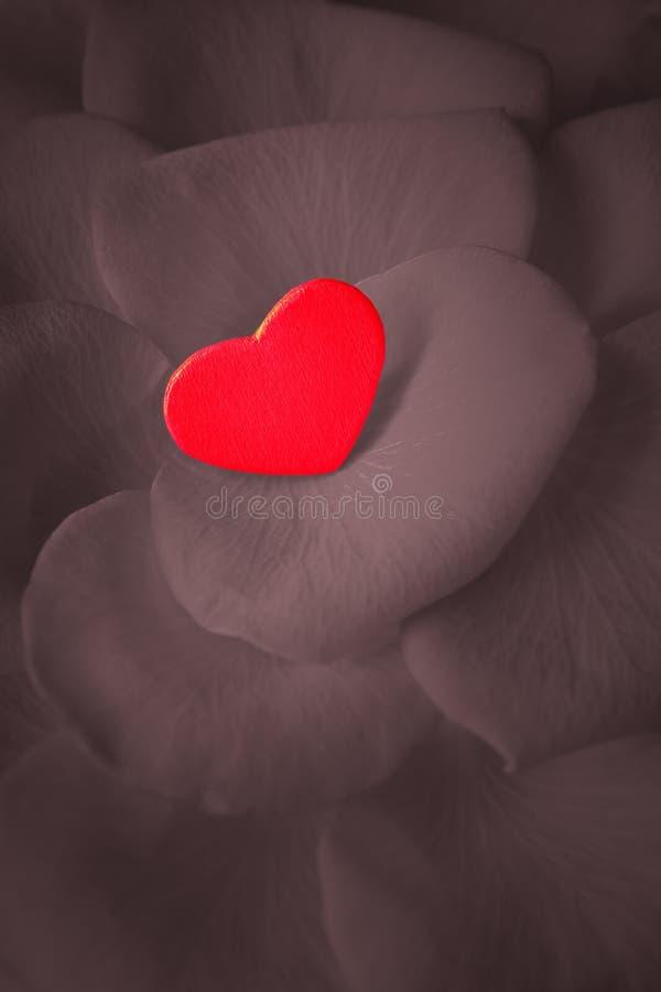 红色玫瑰花瓣心脏爱 免版税库存照片