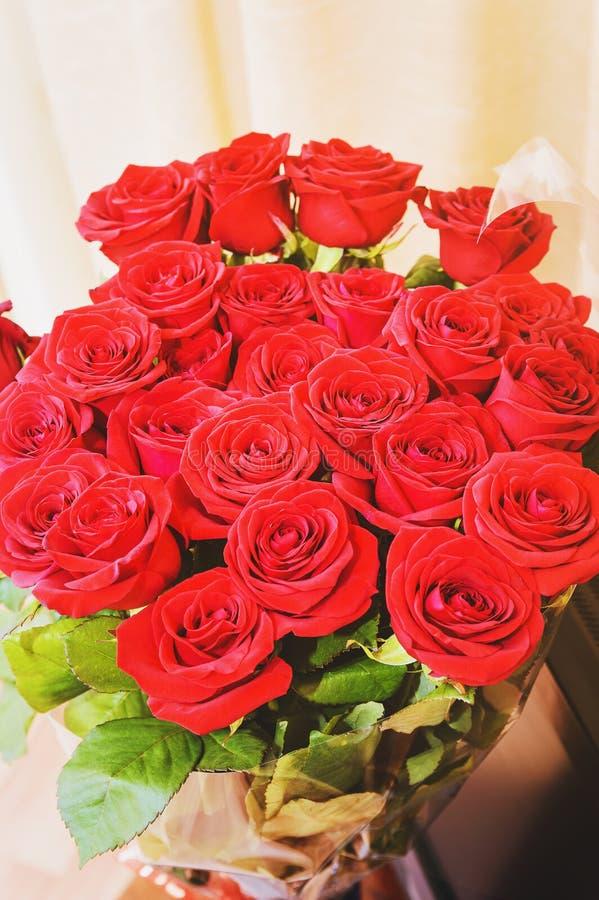 红色玫瑰 特写镜头,选择聚焦 免版税库存照片