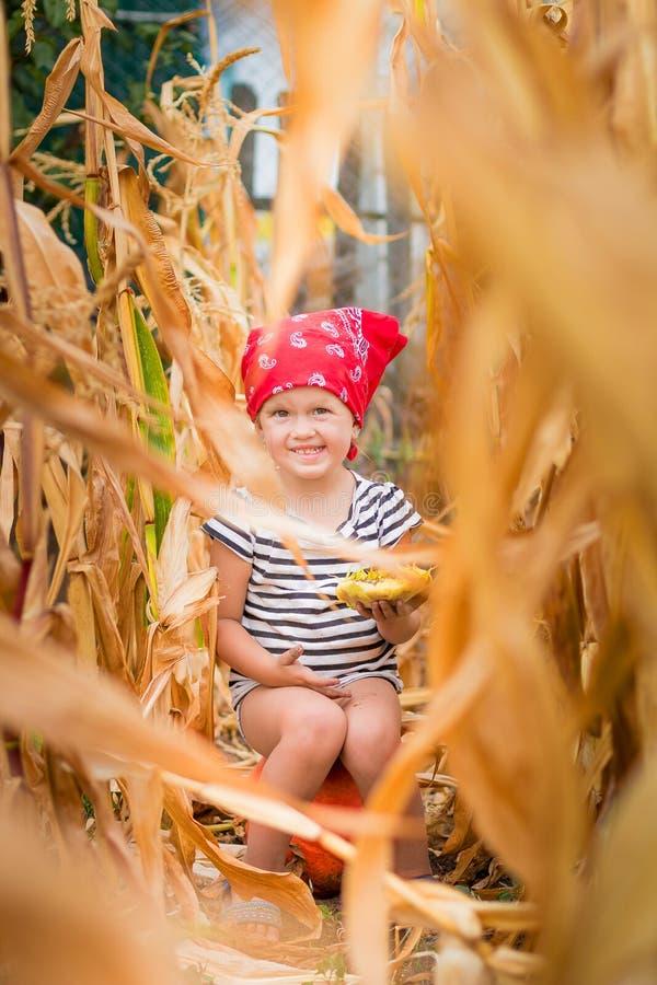 红色班丹纳花绸和条纹发球区域的愉快的孩子坐pumpkinin玉米田 免版税库存照片