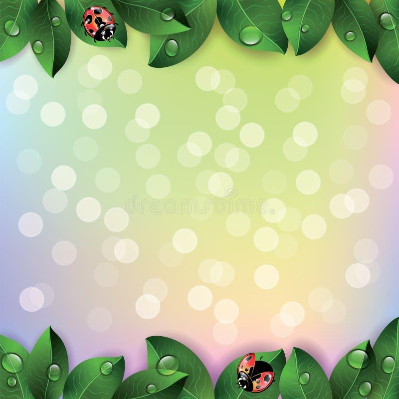 红色瓢虫和绿色叶子 向量例证