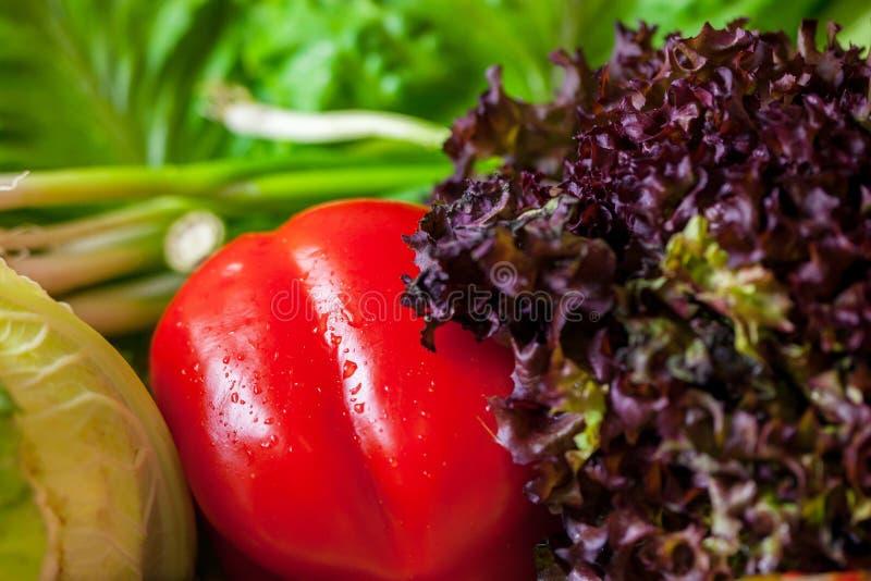 红色甜椒和绿色莴苣特写镜头 免版税库存照片