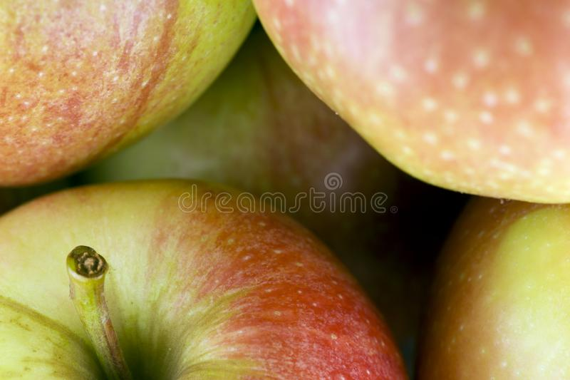 红色生物苹果,食物 库存照片