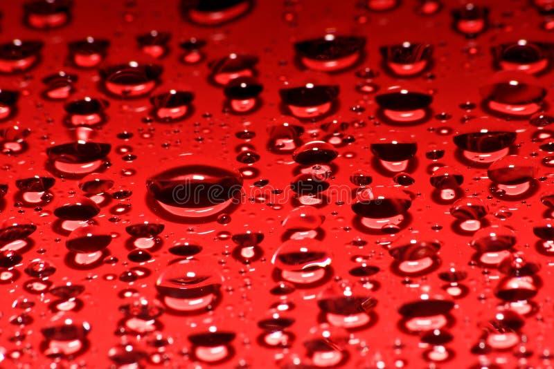 红色的小滴 免版税库存图片