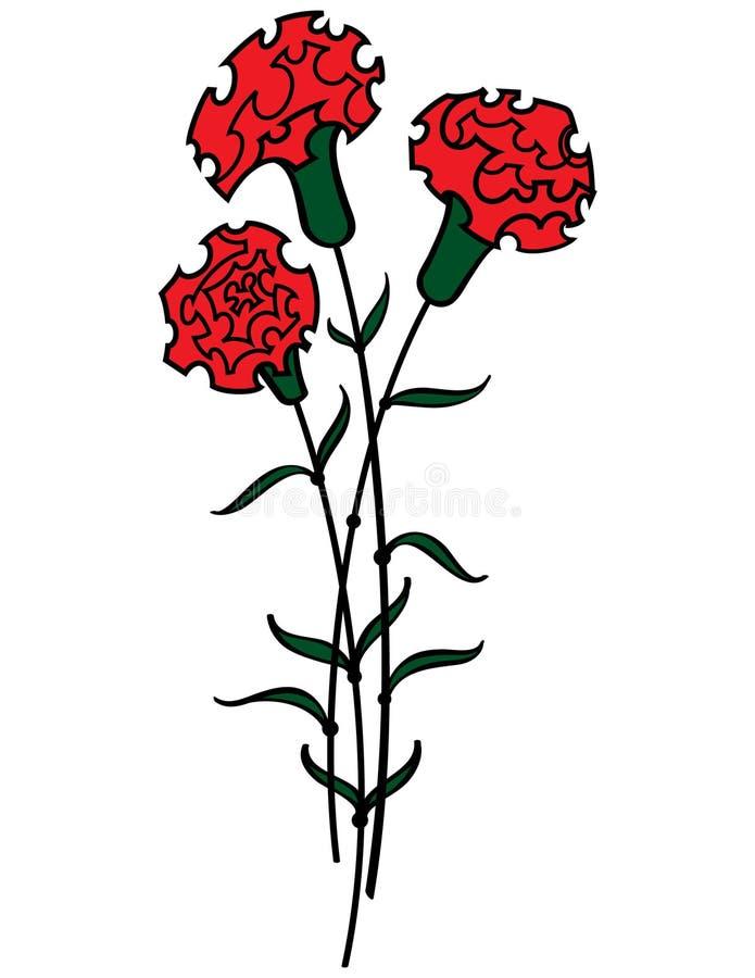 红色的康乃馨 向量例证