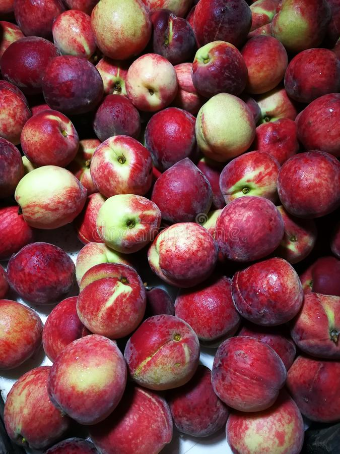 红色的桃子 免版税库存照片