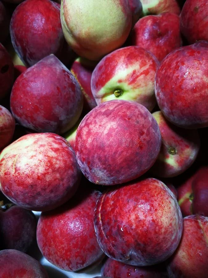红色的桃子 免版税库存图片