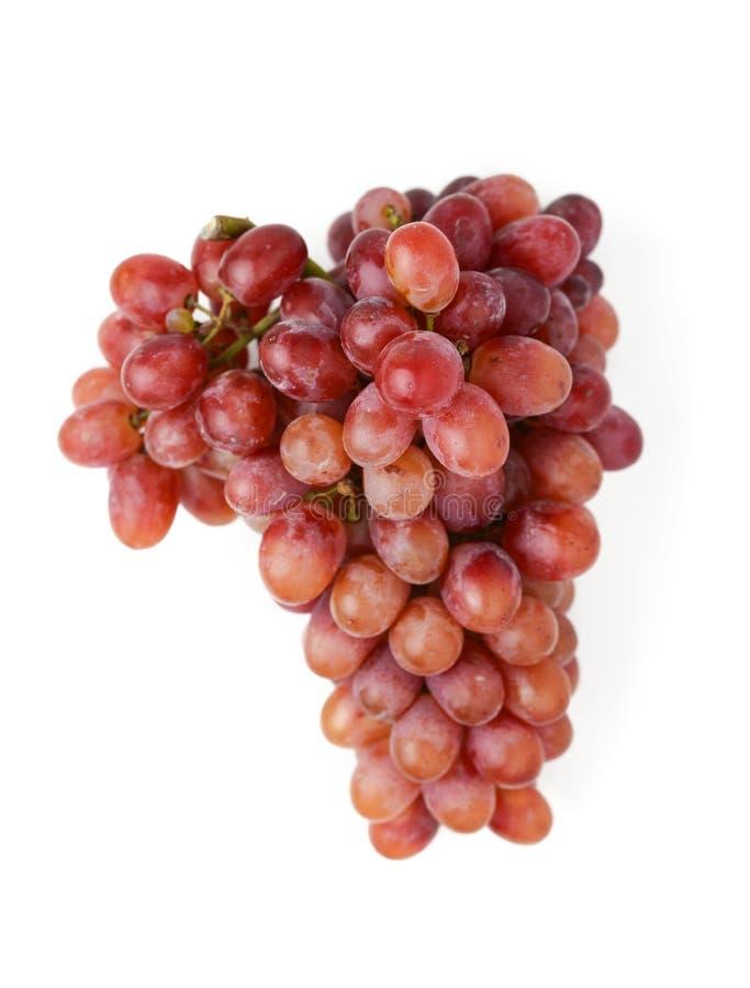 Download 红色的葡萄 库存图片. 图片 包括有 葡萄, 空白, 红色, 背包, 果子, 查出, 健康, 无核, 食物 - 62525743