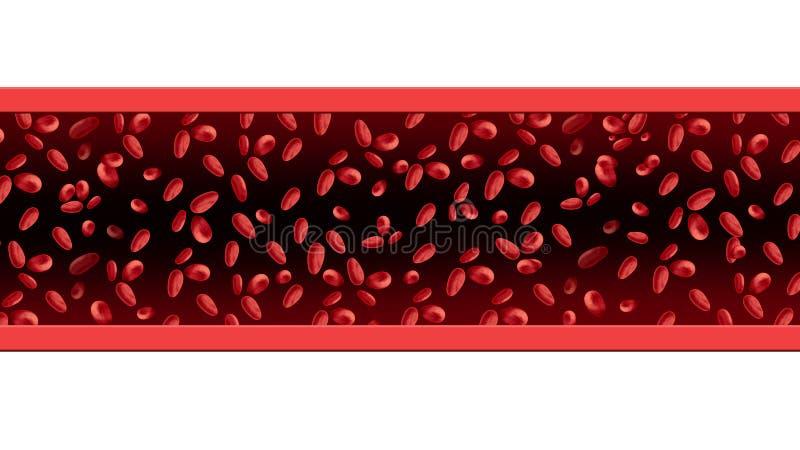 红色的血细胞 向量例证