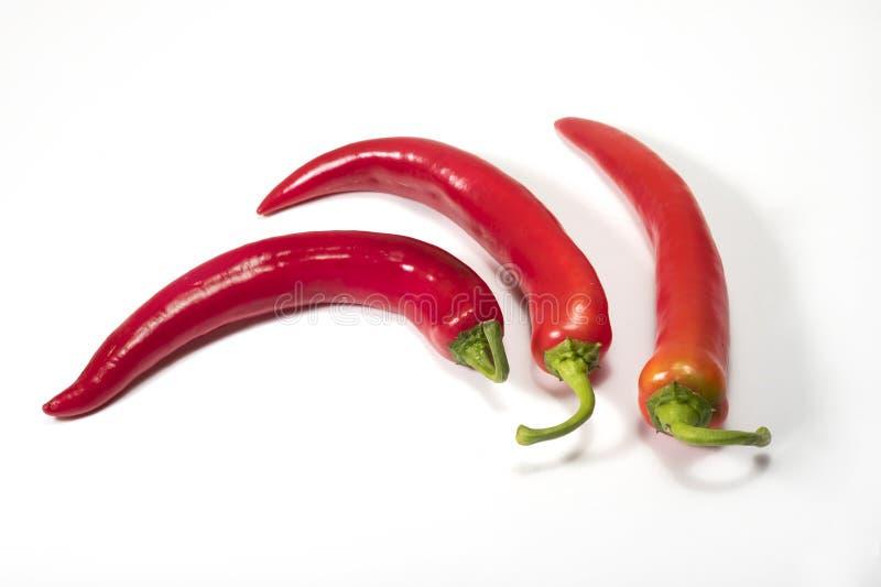 红色的辣椒 库存照片