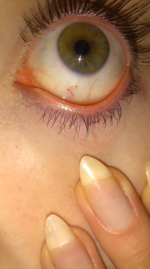 红色眼睛 库存图片