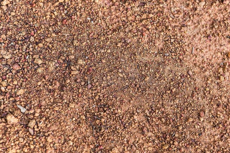 红色石渣的抽象构成与枝杈的 库存照片