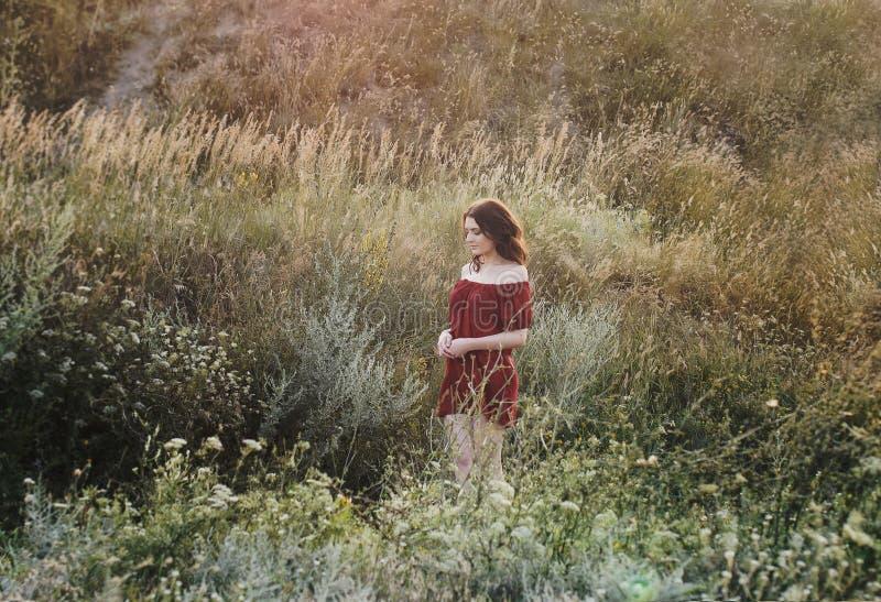 红色礼服的女孩在花的领域,油刷子,艺术照片,女孩跑在领域的,走在自然的女孩 库存照片