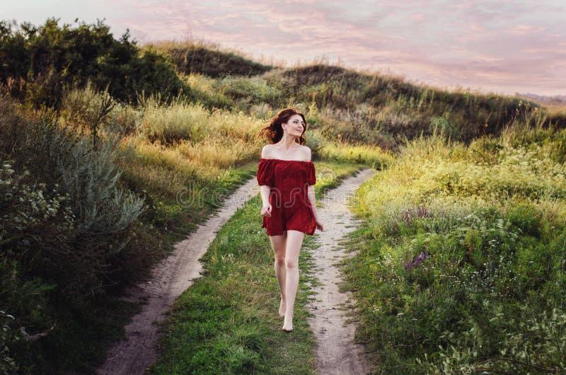 红色礼服的女孩在花的领域,油刷子,艺术照片,女孩跑在领域的,走在自然的女孩 库存图片