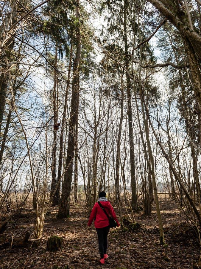 红色礼服的少妇享受与照片照相机的自然 库存图片