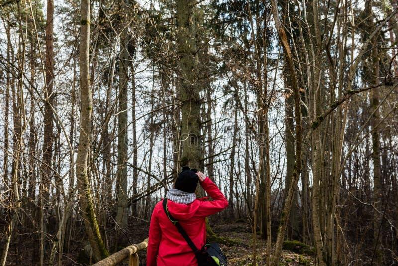红色礼服的少妇享受与照片照相机的自然 免版税库存照片